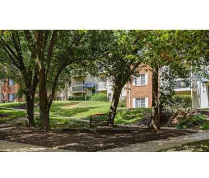 1 Bed - Foxchase Apartments at 320 North Jordan St in Alexandria VA is a Apartment