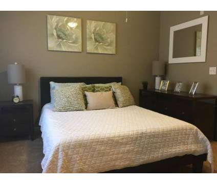 1 Bed - The Reserve at Oakleigh at 3562 Pin Hook Rd in Antioch TN is a Apartment