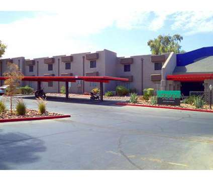 1 Bed - Cabana at the Pointe at 1829 East Morten Ave in Phoenix AZ is a Apartment