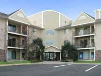 1 Bed - Park Avenue Apartments & Townhomes