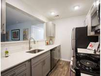 1 Bed - Ashford Druid Hills