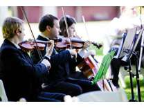 Need a wedding string quartet, trio, or duet? 15 years experience