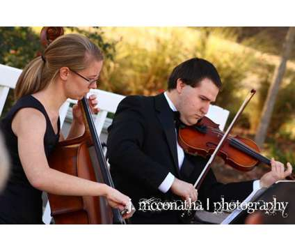 Need a wedding string quartet, trio, or duet? 15 years experience is a Party & Entertainment Services service in Atlanta GA