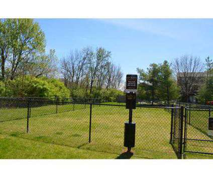 1 Bed - Cove Lake Village at 3351 Cove Lake Dr in Lexington KY is a Apartment