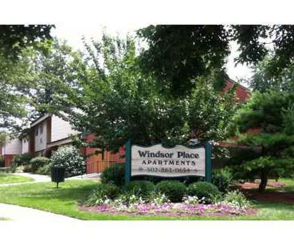 1 Bed - Windsor Place and Spring View Apartments at 110 Greenbriar Dr E2 in Georgetown KY is a Apartment