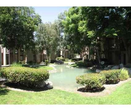 Studio - Casa Mediterrania at 1043 Santo Antonio Drive in Colton CA is a Apartment