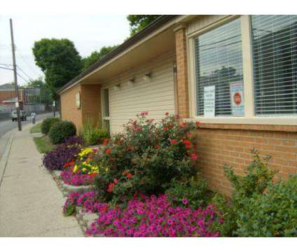 1 Bed - Prall Place Apartments at 645 Winnie St in Lexington KY is a Apartment