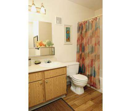 1 Bed - Glen at Briargate at 1510 Chapel Hills Dr in Colorado Springs CO is a Apartment