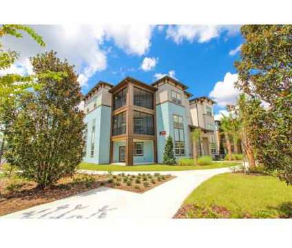 1 Bed - Tapestry Lake Park Apartments at 18402 Tapestry Lake Cir in Lutz FL is a Apartment