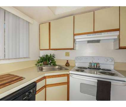 1 Bed - Greentree at 5201 N Dixie Highway in Fort Lauderdale FL is a Apartment
