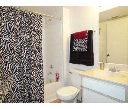 2 Beds - Willow Green at 8301 Willow Place North in Houston TX is a Apartment