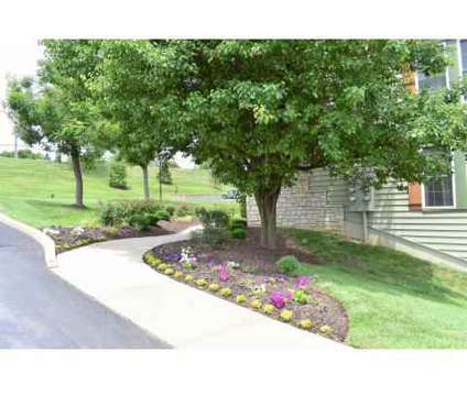 1 Bed - Village Royale Apartments at 5602 Duessel Ln in Saint Louis MO is a Apartment