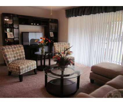 1 Bed - The Park at Sorrento at 900 Woodside Circle in Kissimmee FL is a Apartment