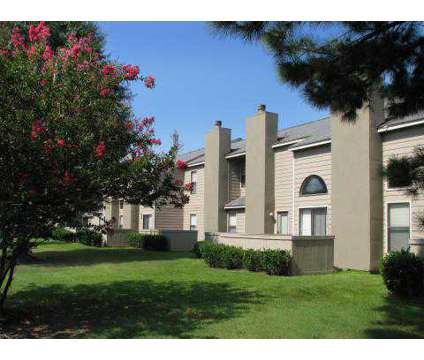 1 Bed - Riverdale at 3295 Riverdale Rd in Memphis TN is a Apartment