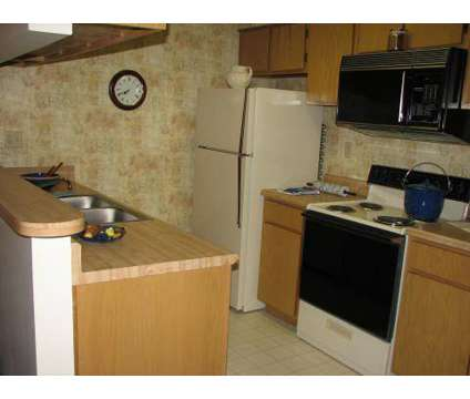 2 Beds - Edgewater at 1880 Sycamore View Rd in Memphis TN is a Apartment