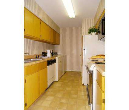 1 Bed - Rock Creek at 8150 Rockcreek Parkway in Cordova TN is a Apartment