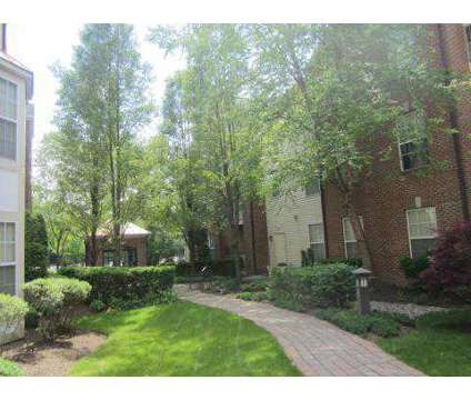 1 Bed - Columbia Court at 50 Maple Avenue in Springfield NJ is a Apartment