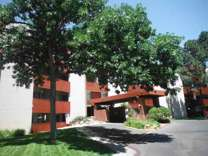 1 Bed - Three Fountains Apts