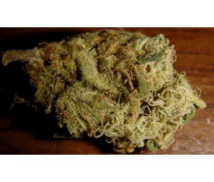 medical weed is a free Green, Orange, Purple, White Free Stuff in San Jose CA