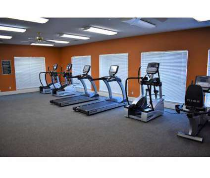 1 Bed - Houston Levee at 9940 Paddle Wheel Dr in Cordova TN is a Apartment