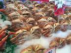 Business For Sale: Profitable Seafood Market