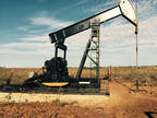 Business For Sale: Oil Wells W