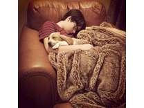 AKC Registered Basset Hound Puppy