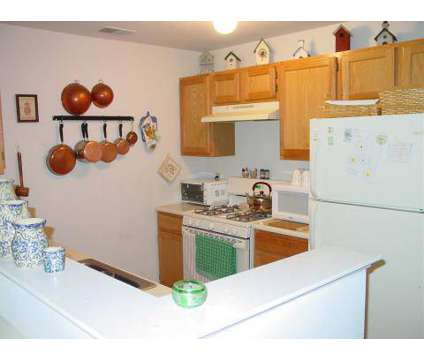 1 Bed - Canfield Mews at 3101 Barclay Court in Randolph NJ is a Apartment