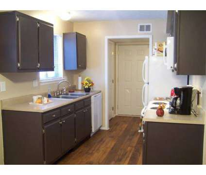 2 Beds - Treetops Apartments at 3640 Bold Bidder Dr in Lexington KY is a Apartment