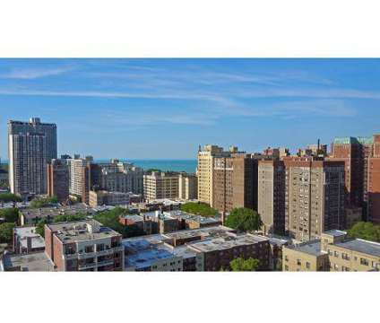 1 Bed - Belmont Tower Apartments at 510 W Belmont Avenue in Chicago IL is a Apartment