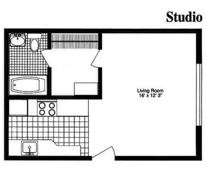 Studio - Lakeshore Dunes at 440 N Lake St in Gary IN is a Apartment