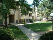 1 Bed - The Pines Apartments