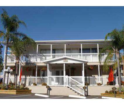 1 Bed - Grande Bay at 2909 Gulf To Bay Blvd in Clearwater FL is a Apartment
