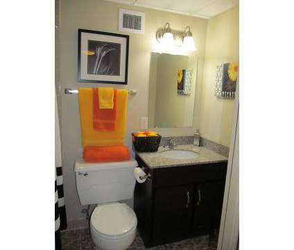 2 Beds - The Tower at Morgan Hill Apartments at 2521 Kingston Pike in Knoxville TN is a Apartment