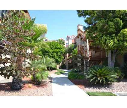 2 Beds - La Jolla International Gardens at 3417 Lebon Dr in San Diego CA is a Apartment