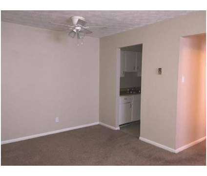 1 Bed - Chelsea Apartments at 2640 Wilhite Ct in Lexington KY is a Apartment