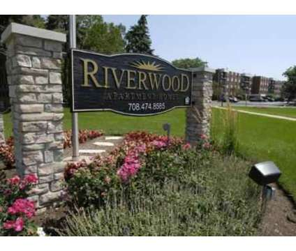 1 Bed - Riverwood Apartment Homes at 3649 173rd Court in Lansing IL is a Apartment