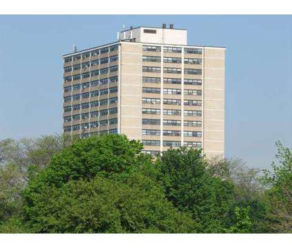 1 Bed - Island Terrace Apartments at 6430 S Stony Island in Chicago IL is a Apartment