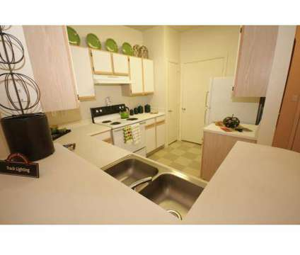 2 Beds - Saddle Ridge at 5711 North Knoll in San Antonio TX is a Apartment