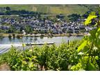 Stunning river view, Mosel. Swap possible.