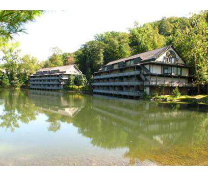 1 Bed - Timber Top Apartments | 1551 Treetop Trail Akron OH ...