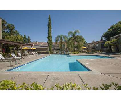 1 Bed - River Pointe at 2361 Oak Harbour Dr in Sacramento CA is a Apartment