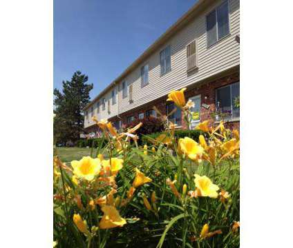 1 Bed - Coppertree Apartments at 12255 Pine St in Taylor MI is a Apartment