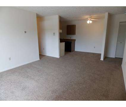 1 Bed - Ramblewood Apartments at 6300 W Michigan in Lansing MI is a Apartment