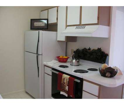 1 Bed - Stone Haven Pointe at 1304 Stoney Pointe Dr in Rock Hill SC is a Apartment