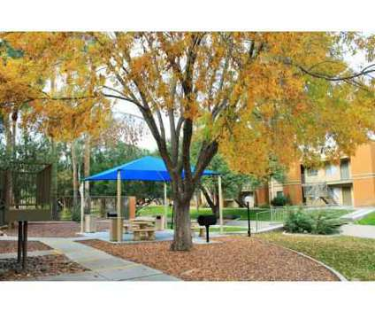 2 Beds - San Mateo at 2800 South Mission Rd in Tucson AZ is a Apartment