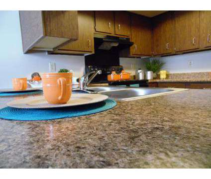 1 Bed - Chauncey Village at 1651 North Chauncey Ct in Lafayette IN is a Apartment