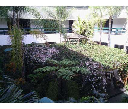 Office space for rent at 2667 Camino Del Rio South. San Diego, Ca. 92108 in San Diego CA is a Office Space