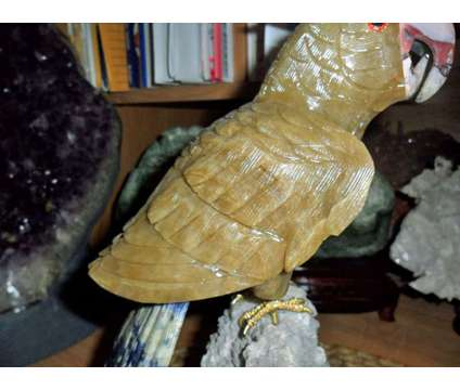 Gorgeous and Beautiful Natural Aragonite Gemstone Cockatoo Bird Carving is a Orange Collectibles for Sale in New York NY