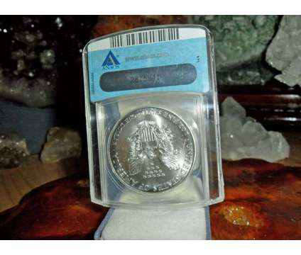 Exceptional and Beautiful American Silver Eagle Dollar {1994-P ANACS Struck Thru is a Coins for Sale in New York NY